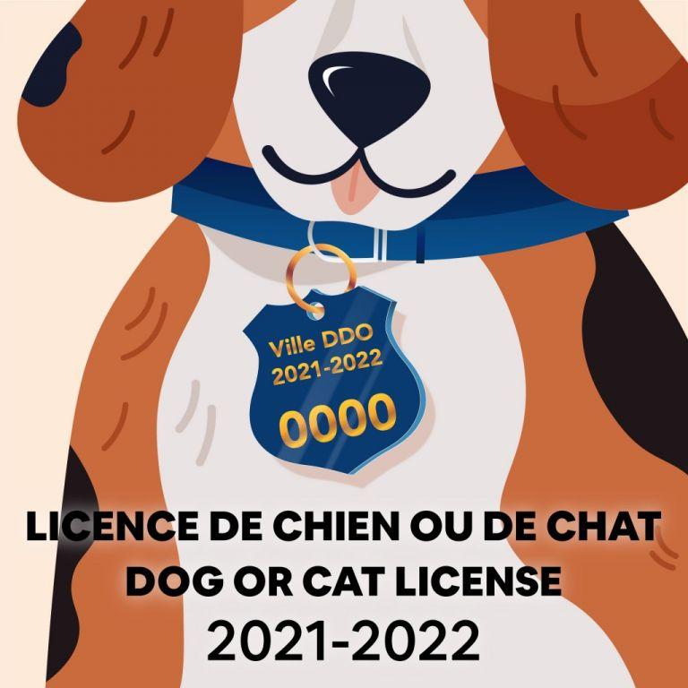 Licence de chien ou de chat 2021 à 2022